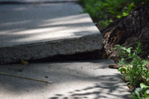 3 Reasons Concrete X-Ray May Be Exactly What You Need